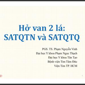 Hở van 2 lá: SATQTN và SATQTQ